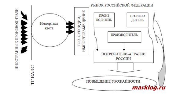 Аналитическая схема влияния импортной квоты и субсидирования